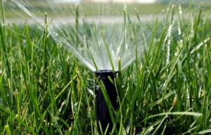 a spray head optimized by our Fairfield sprinkler optimization techs
